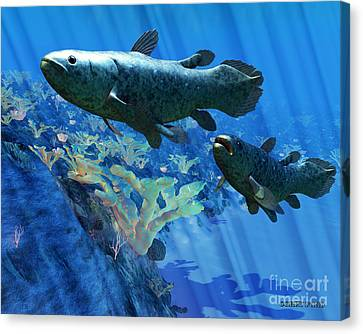 Coelacanth Fish Canvas Print by Corey Ford