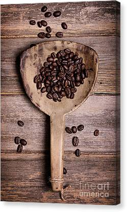 Coffee Beans In Antique Scoop. Canvas Print by Jane Rix