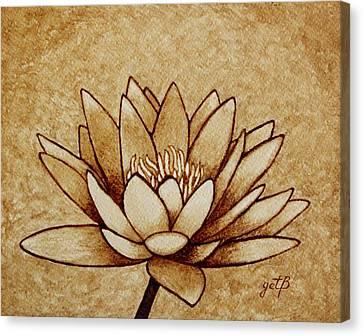 Coffee Painting Water Lilly Blooming Canvas Print by Georgeta  Blanaru
