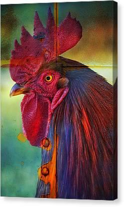 Cogburn Canvas Print by Skip Hunt