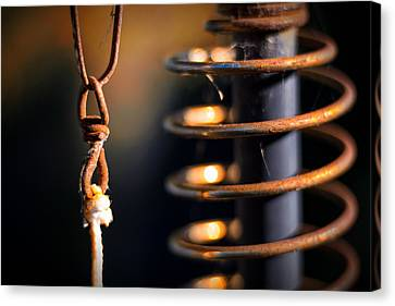 Canvas Print featuring the photograph Coil by Tim Nichols