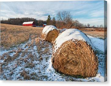 Cold Bales Canvas Print by Todd Klassy