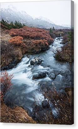 Canvas Print featuring the photograph Cold Creek In Autumn by Tim Newton