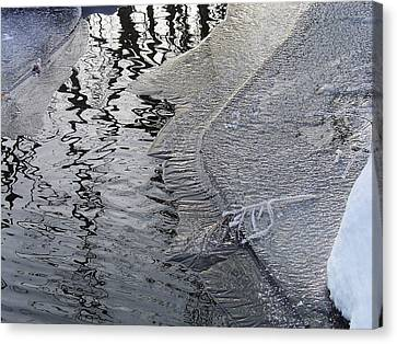 Cold Enough To Frost A Stick Canvas Print