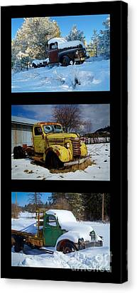 Cold Guys Canvas Print by Idaho Scenic Images Linda Lantzy