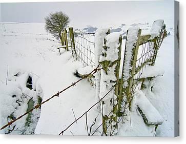 Cold Landscape Canvas Print by Richard Outram