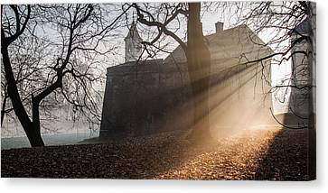 Cold Morning Canvas Print by Davorin Mance