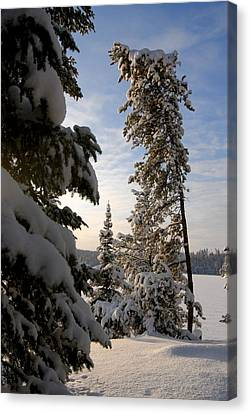 Cold Morning On Boot Lake Canvas Print by Larry Ricker