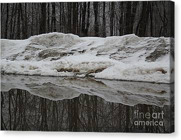 Canvas Print featuring the photograph Cold Rain And Snow by Jesse Ciazza