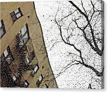 Cold Rain Canvas Print