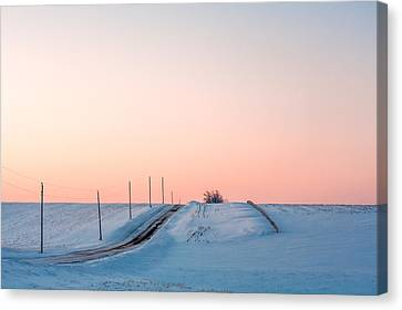 Cold Resolute Canvas Print by Todd Klassy