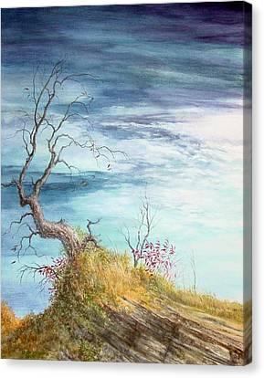 Cold September Canvas Print by Steve Mountz