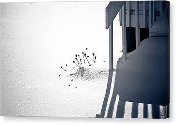 Greyscale Canvas Print - Cold Shadows by Maggie Terlecki