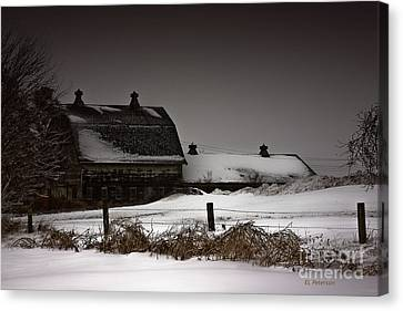 Cold Winter Night Canvas Print by Edward Peterson