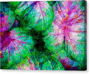 Canvas Print featuring the photograph Coleus by Paul Wear