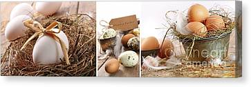 Collage Of Assorted Egg Images  Canvas Print by Sandra Cunningham