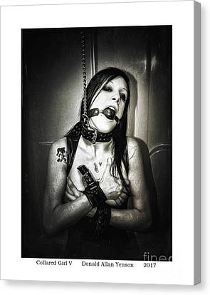 Collared Girl V Canvas Print by Donald Yenson