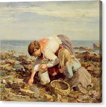 Collecting Shells  Canvas Print by William Marshall Brown