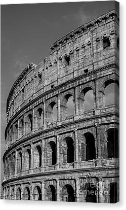 Colleseum Rome Italy Canvas Print by Edward Fielding