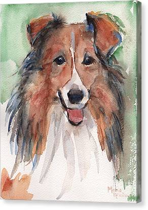Collie, Shetland Sheepdog Canvas Print by Maria's Watercolor