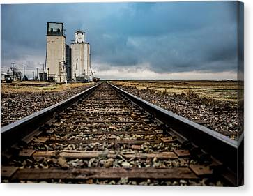 Collyer Tracks Canvas Print by Darren White