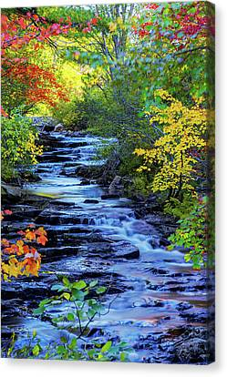 Riverscape Canvas Print - Color Alley by Chad Dutson