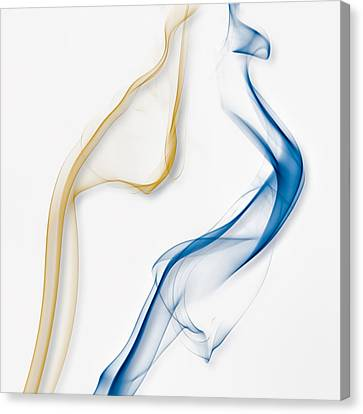 Color And Smoke IIi - Dance Canvas Print by Scott Norris