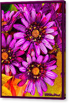 Canvas Print featuring the photograph Color Bright by Barbara MacPhail