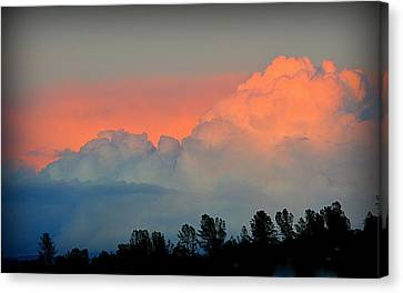Canvas Print featuring the photograph Color Burst by AJ Schibig
