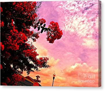 Stop Sign Canvas Print - Color Matching World by Chuck Taylor