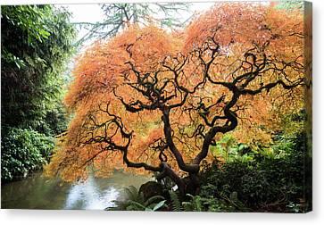 Color Me Autumn Canvas Print