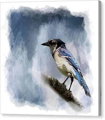 Color Me Blue Canvas Print by Cyndy Doty