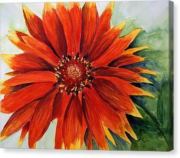Color My Daisy Canvas Print by Tina Storey