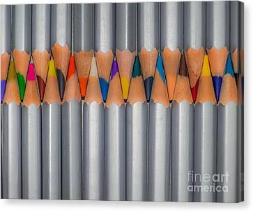 Color Pencils Canvas Print by Anakin13