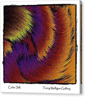 Color Silk Canvas Print by Terry Mulligan