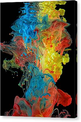 Colour Splash Canvas Print by Henry Jager