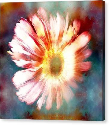Blending Canvas Print - Color Splashed Daisy by Jenn Teel