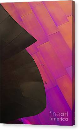 Color Waves Canvas Print
