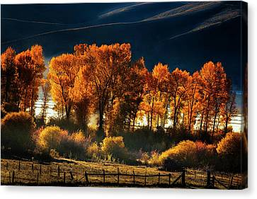 Canvas Print featuring the photograph Colorado Autumn Morning by Andrew Soundarajan