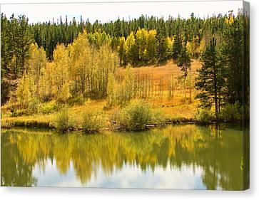 Colorado Autumn Reflections Canvas Print