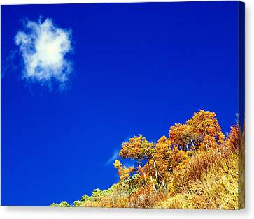 Canvas Print featuring the photograph Colorado Blue by Karen Shackles