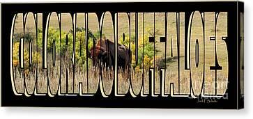 Colorado Buffaloes Name  9236 Canvas Print by Jack Schultz