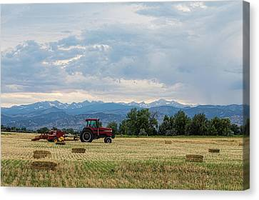 Canvas Print featuring the photograph Colorado Country by James BO Insogna