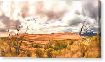 Colorado Dunes Canvas Print