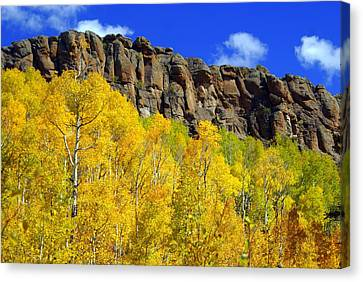 Colorado Fall 3 Canvas Print by Marty Koch