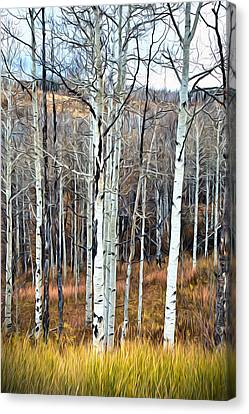 Canvas Print featuring the photograph Colorado Fall Aspen by James Steele