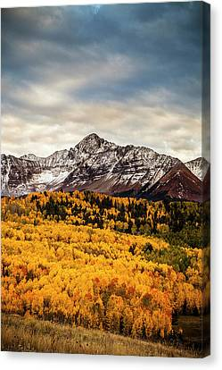 Colorado Gold Canvas Print by Andrew Soundarajan