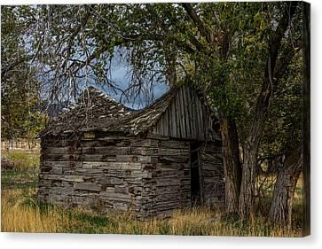 Log Cabin Interiors Canvas Print - Colorado Log Cabin by Paul Freidlund