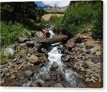 Colorado Mountain 3 Canvas Print