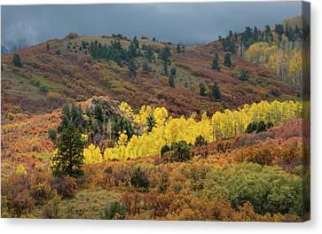Colorado September Canvas Print by Joseph Smith